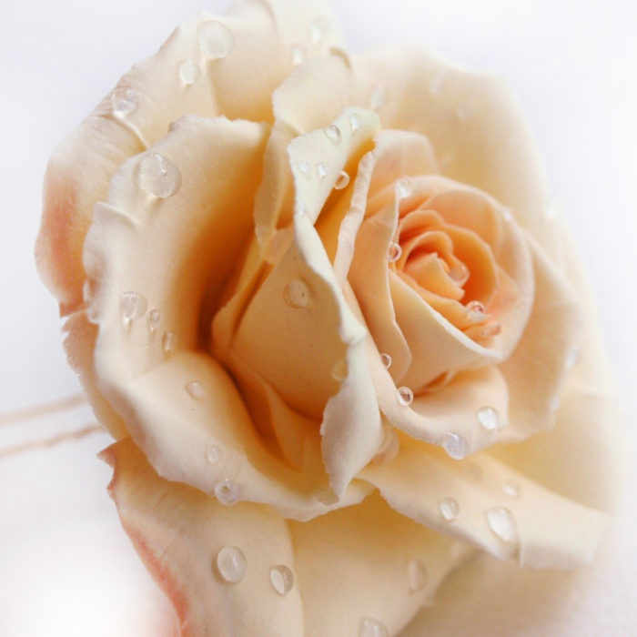 Ivory Rose Hair Pin 2