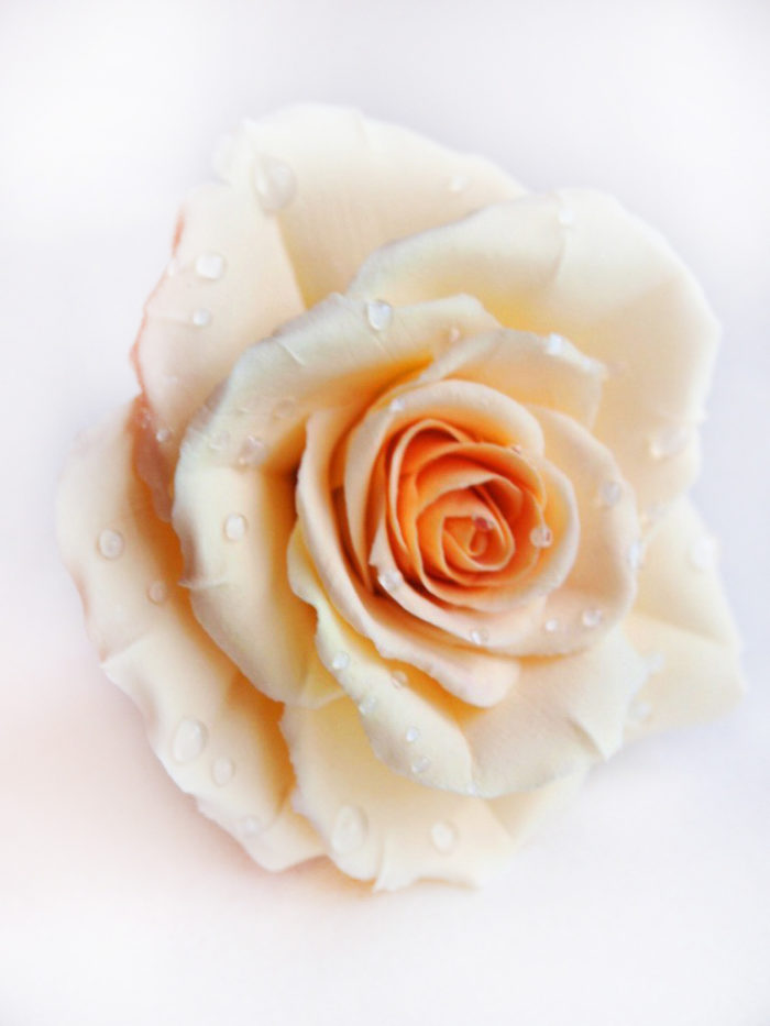 Ivory Rose Hair Pin 3