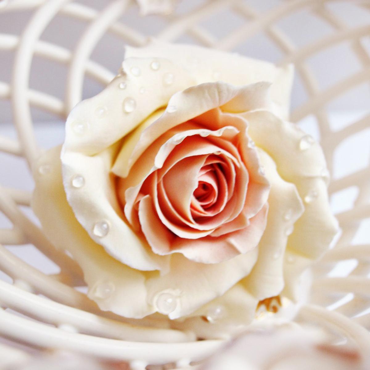 Ivory Rose Hair Pin - Handmade Flowers | Oriflowers