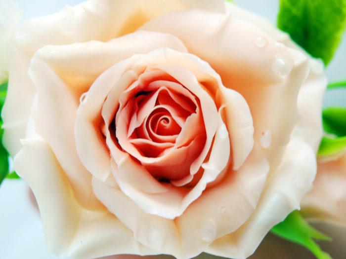 Rose Hair Clips Bridal 1
