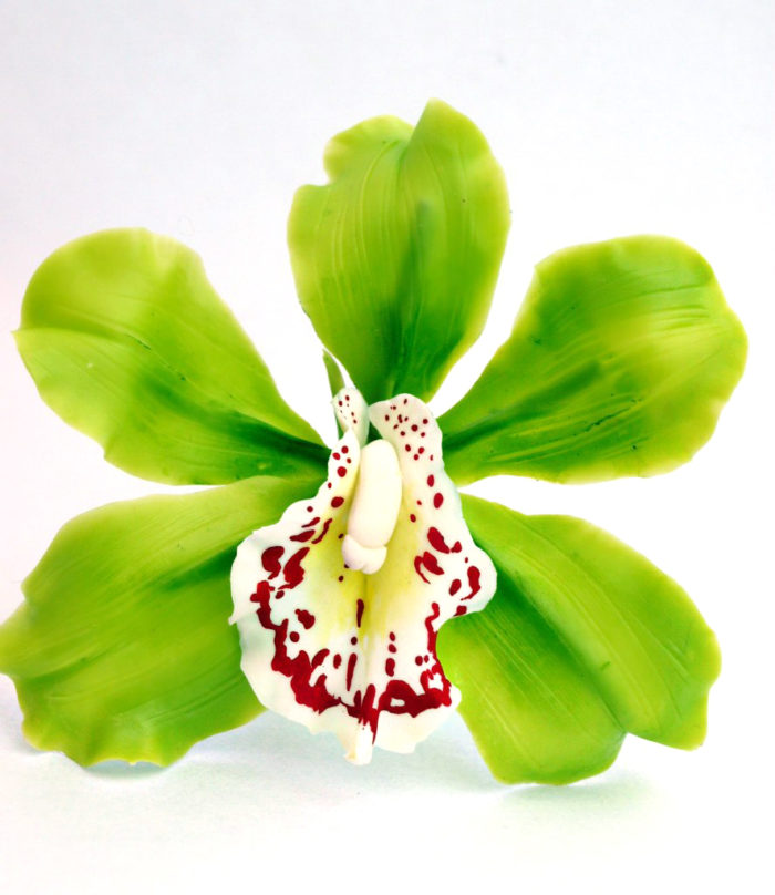 Cymbidium Orchid Flower Hair Clip 1