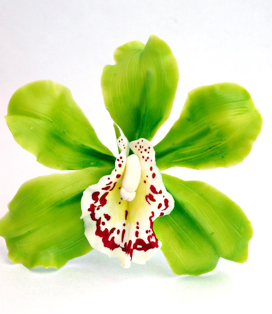 3 5 Black Flower Hair Clip With Flower Center: Cymbidium Orchid Flower Hair Clip