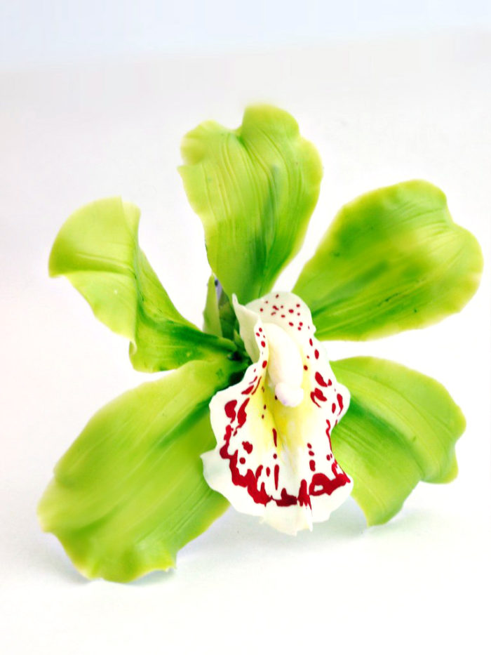 Cymbidium Orchid Flower Hair Clip 2