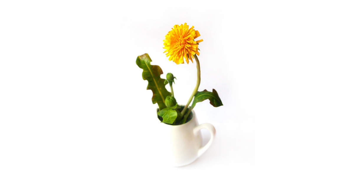 Flower Decoration Artificial Dandelion In Milk Jug