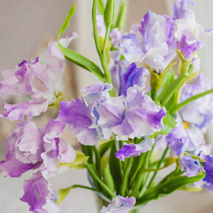 Iris Bouquet 4 | Oriflowers
