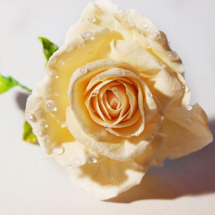 Rose Hair Pin | Oriflowers
