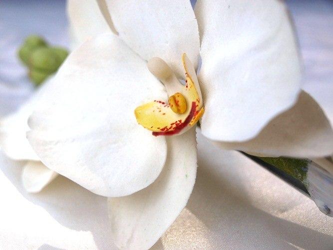 White Orchid Hair Clip 2 | Oriflowers